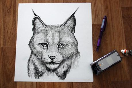 idearabbit-lynx