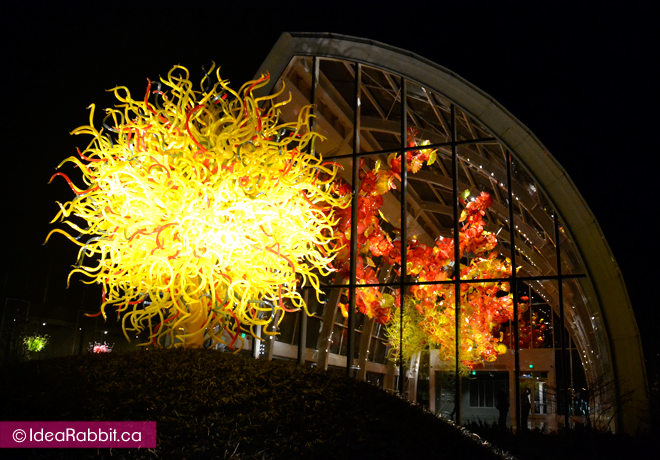 idearabbit-chihuly10
