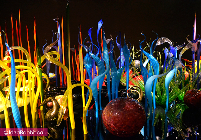 idearabbit-chihuly5