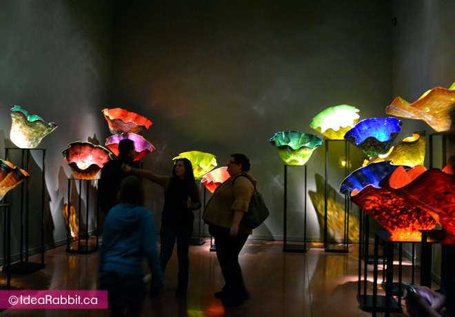 idearabbit-chihuly8