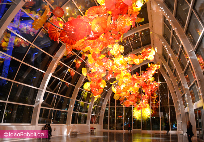 idearabbit-chihuly9