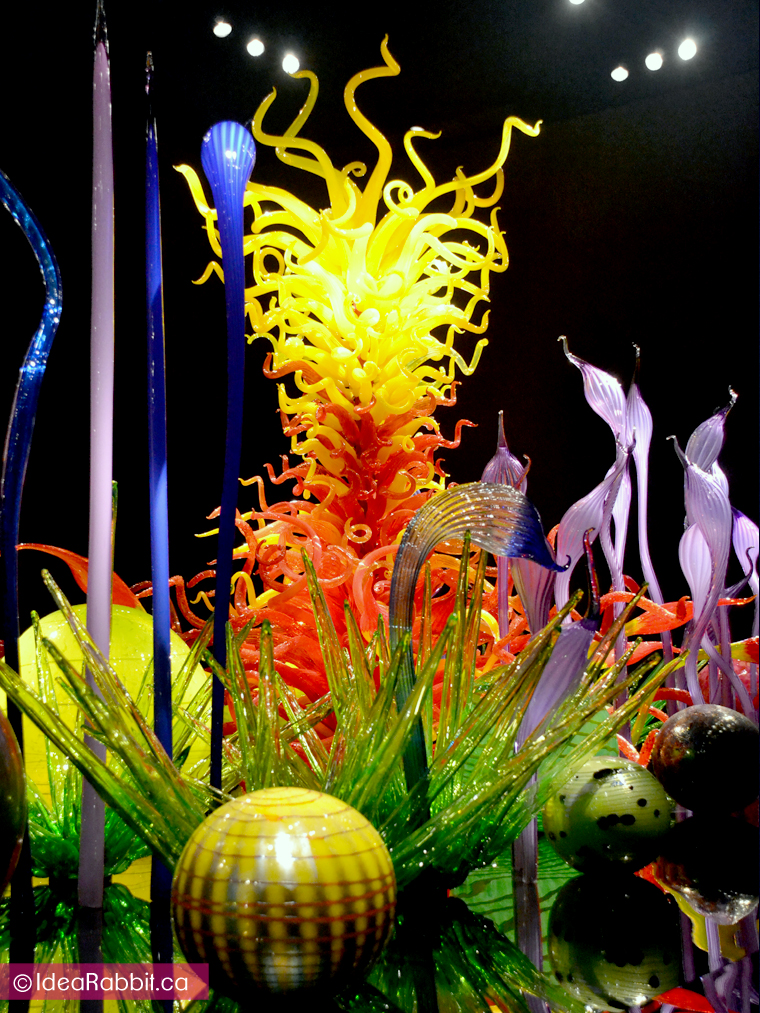 idearabbit-chihuly15